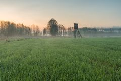 Landscape of field with raised hide. And forest photographed at sunrise. Beautiful polish countryside Stock Images