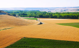 Landscape with  fields Royalty Free Stock Photos