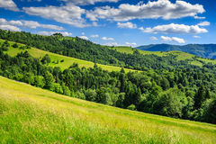 Landscape with fields and  forest on hillside Stock Photo
