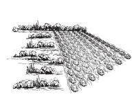 Landscape with Fields. Hand drawn Vector Illustration Royalty Free Stock Photos
