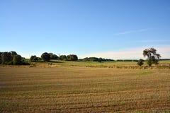Landscape of fields after harvest stock photo