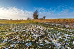 Landscape of fields at late autumn or winter Royalty Free Stock Photography