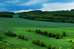 landscape fields in spring Royalty Free Stock Image