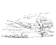 Landscape with Fields and Tree. Landscape with Fields and Houses. Hand drawn Vector Illustration Stock Photography