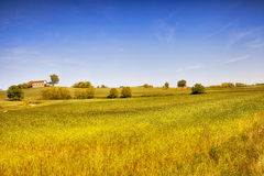Landscape of fields Stock Photos