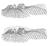 Landscape with Fields and Villages. Vineyard. Landscape with Fields and Villages. Hand drawn Vineyard Stock Images
