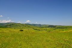 Landscape with fileds of yellow flowers, hills and blue sky Stock Photos