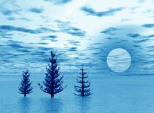 Landscape with fir trees Royalty Free Stock Images
