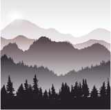 Landscape with fir trees. Forest background, hand drawn vector illustration Stock Image
