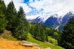 Landscape with fir-trees near Mont Blanc, Alps Stock Photo