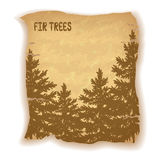 Landscape, Fir Trees Silhouettes. On Vintage Background of an Old Sheet of Paper. Eps10, Contains Transparencies. Vector Stock Photo
