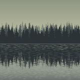 Landscape with fir trees and water. Forest background, hand drawn vector illustration Stock Photography