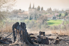 Landscape after fire Stock Photography