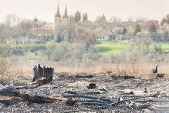 Landscape after fire Royalty Free Stock Image