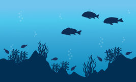 Landscape of fish and reef Royalty Free Stock Image