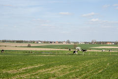 Landscape in flanders fields belgium sky and clouds farm Royalty Free Stock Image