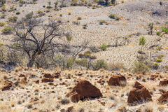 Landscape. Flinders Ranges. South Australia Royalty Free Stock Photos