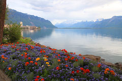 Landscape with flowers and Lake Geneva, Montreux, Switzerland. Royalty Free Stock Images