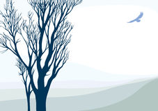 Landscape with flying eagle. Tranquil landscape with flying eagle and tree. Vector illustration stock illustration