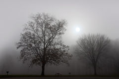 Landscape of fog royalty free stock photos