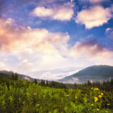 Landscape with fog Royalty Free Stock Images