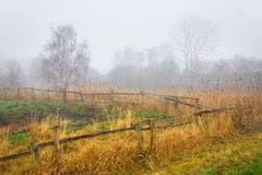 Landscape in fog Stock Photography