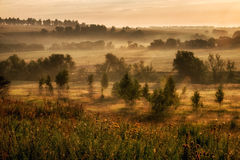 Landscape with fog at the morning. Stock Photography