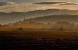 Landscape, Fog, Morning, Sunshine Royalty Free Stock Photography