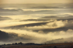 Landscape with fog over the hills and a bird. Autumn landscape with fog over the hills and a bird flying at sunrise Stock Photography