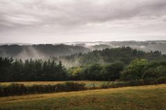 Forest with fog over the mountains, in a cloudy sunrise, Spain royalty free stock photos