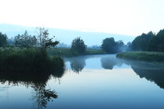 Landscape foggy morning lake Stock Images