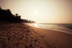 Landscape of footprints on tropical island beach. With palm trees in the sunrise stock images