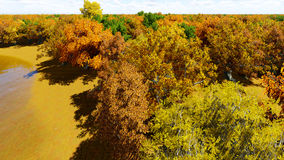 Landscape forest autum 3D render.  Royalty Free Stock Photos