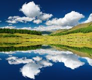 Landscape with forest and blue sky Royalty Free Stock Photography