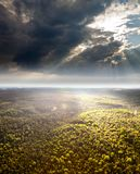 Landscape with forest and clouds Stock Photos
