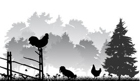 Landscape with forest and cocks. Grey landscape with forest and cocks Royalty Free Stock Photos