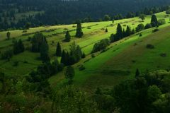Landscape with forest and fields on Slovak/Poland boundary Stock Images