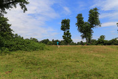 The landscape in the forest park in chitwan,Nepal Stock Photo