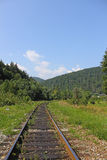 Landscape Forest Railway. Nature summer royalty free stock photography
