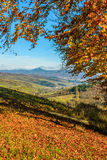 Landscape with forest in red foliage on sunny autumn day Stock Photo