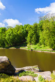 Landscape forest and river Royalty Free Stock Photography
