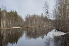 Landscape with forest and river  . Royalty Free Stock Image