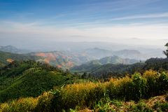 Landscape of forest in sierra that some part was deforestation by human, Nan. Northern of Thailand Royalty Free Stock Images