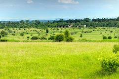 Landscape of forest-steppe. A lonely building in forest-steppe Stock Image
