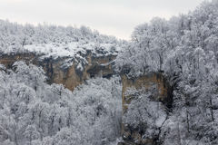 Landscape of the forested hills in the snow Stock Images