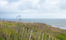 Landscape format rugged coastal view Stock Photography