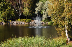 Landscape with a fountain. Fountain amidst the lake in a park stock photos