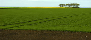 Landscape in France. Normandie France Royalty Free Stock Photography