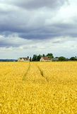 Landscape in France (Centre) Royalty Free Stock Image