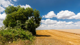 Landscape of French Vexin Royalty Free Stock Photography